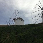 The Windmills (Kato Milli)