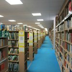 We house hundreds of thousands of books of all shapes and sizes, topics and age