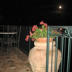 Room 29 Patio Flowerpot in Moonlight