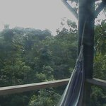 View from my hammock, Milpas Eco-Lodge.