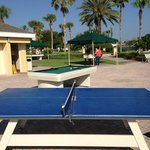 Ping Pong, Pool and Foozball tables