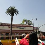 Photo of City Sightseeing Los Angeles
