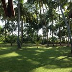Club Bentota - Garden by the sea
