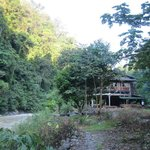 View to the guest house when you come from bukit lawang