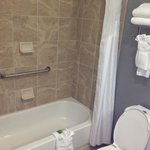 Foto de Holiday Inn Express Hotel & Suites Mt Pleasant-Charleston