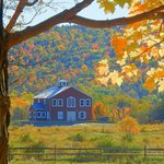The Carriage House in Fall