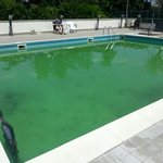 pea soup swimming pool... health hazard (June 2013)