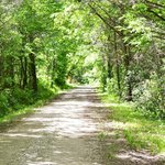 the scenic trail right by the campground leading up to the natural swimming pool