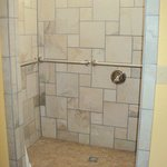 Mobility Accessible Bathroom Roll-In Shower