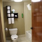 Hampton Inn Petersburg - Ft. Lee resmi