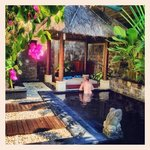 lovely tranquil & private garden & pool