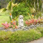 Foto di Aloha Junction Bed and Breakfast