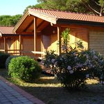 Photo de Camping Village Oasi