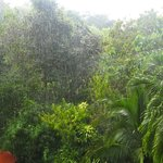 Refreshing shower in the afternoon, view from ap. 2