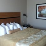 Photo de BEST WESTERN PLUS Chateau Inn Sylvan Lake