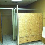 Bare plywood for bathroom stall dividers