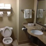 Country Inn & Suites Savannah Airport resmi