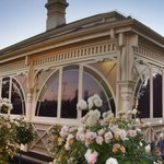 Kurrajong House rose garden