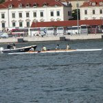 Watching scullers on the harbour