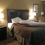 Φωτογραφία: Comfort Inn Warner Robins