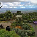 The gardens at Kula Lavendar Farm include a majestic view of the ocean 4,000 feet below.