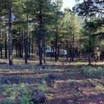 Kaibab Lake Campground resmi