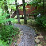 Blue Heron - small path from your car to the cabin