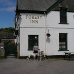The Forest Inn at Hexworthy