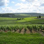 C La Vigne- Authentic Champagne Tour Private Tours