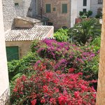 Photo de Casa Bougainvillea