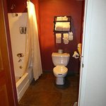 View of bathroom/toilet