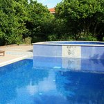 Foto de Olive Farm Of Datca Guesthouse