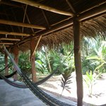Balcony with hammocks in front of the rooms