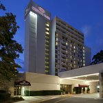 Marriott Charlotte Executive Park
