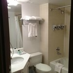 Foto de Four Points by Sheraton Detroit Metro Airport