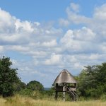 The hide with a view of the Zambezi River