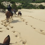 horse riding in costa verde