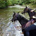 Equutrails Horseback Riding Adventures
