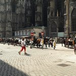 Stephansplatz carriages