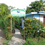 Photo of Cabinas Tortuguero