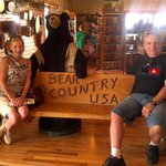 bear country rapid city great attraction