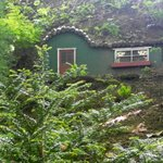 Φωτογραφία: Coach House Bed and Breakfast