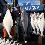 "Catch from the ""Tia' Rose"" in seward, Alaska.  For reservations call 800-548-3474"