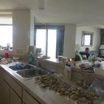 Kitchen area looking into DR?LR and sea shell collection