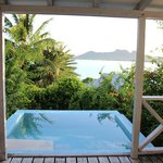 Our view from a sea view with plunge pool room.