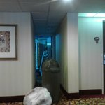 Foto de BEST WESTERN Raleigh Inn & Suites