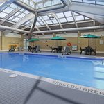 Airports Favorite Indoor Solarium Swimming Pool