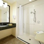 Mobility Acceessible Bathroom