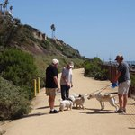Pet Friendly Beach Trail