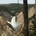 Quintessentially Yellowstone